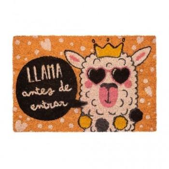 FELPUDO LLAMA ANTES DE ENTRAR