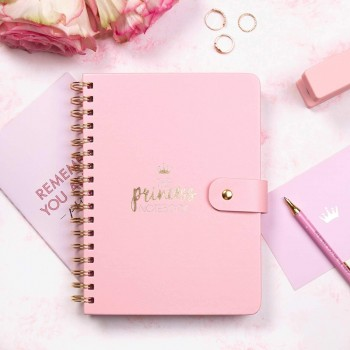 AGENDA PLANNER YOU ARE THE PRINCESS 16,5X20,5